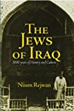 The Jews of Iraq: 3000 Years of History and Culture (Fons Vitae Judaism)