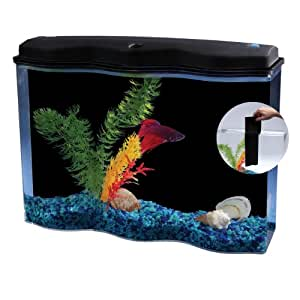 Betta fish tank with divider aquarius for Betta fish tanks amazon