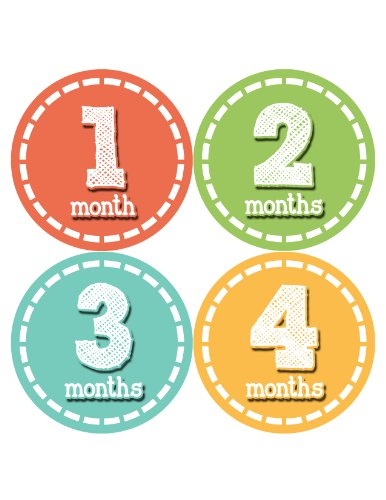 Months in Motion 083 Monthly Baby Stickers Baby Boy or Baby Girl Month 1-12 - 1