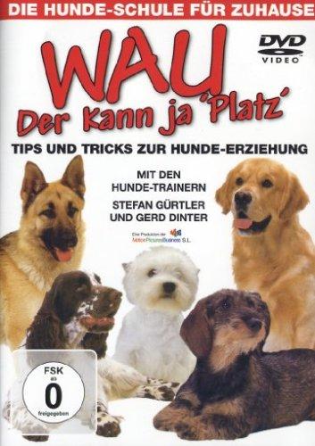 Die Hundeschule Für Zuhause