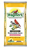 Wagners 76029 Oil Sunflower Seed, 40-Pound Bag
