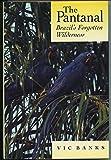 img - for The Pantanal: Brazil's Forgotten Wilderness book / textbook / text book