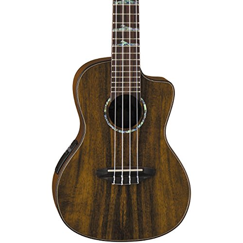 Luna High Tide Series Koa Concert Ukulele