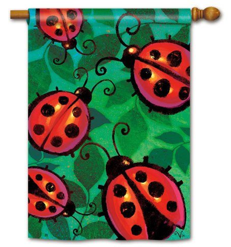 Magnet Works, Ltd. 600 Denier Polyester SolarSilk, Vivid Colors Ladybug Party Standard Flag, Durable, Soft & Silkier