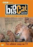 Big Cat Week - Series 4 [DVD]