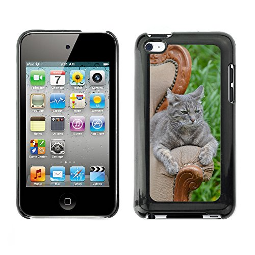 Carcasa Funda Prima Delgada SLIM Casa Case Bandera Cover Shell para // M00110387 Princesse Anaki Cat Pet Feline Nature // Apple ipod Touch 4 4G 4th