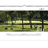 Golfkalender 2016 - Juli (Golf & Landclub Schloss Uhlenhorst)