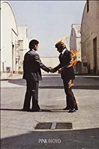 Pink Floyd (wish you were here) - Maxi Poster - 61cm x 91.5cm
