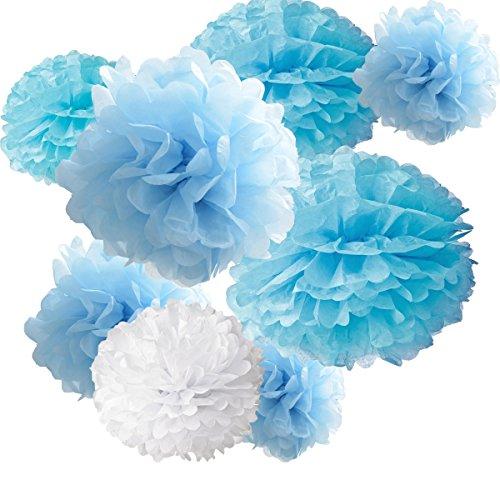 18pcs Tissue Hanging Paper Pom-poms, Hmxpls Flower Ball Wedding Party Outdoor Decoration Premium Tissue Paper Pom Pom Flowers Craft Kit ( Blue & White) (Crepe Pom Pom compare prices)