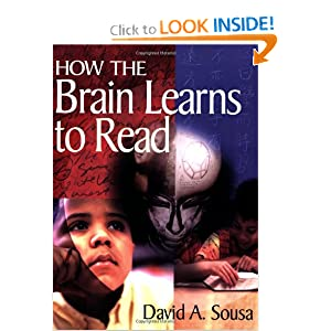 How the Brain Learns to Read