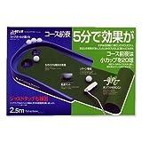 ダイヤ(DAIYA) ゴルフ練習器 パッティングマスター TR-432