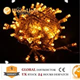 Festival LED String Fairy Lights Warm White with Standard 2 Pin European Plug