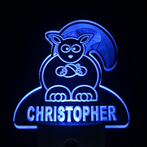 Ws1021-Tm Squirrel Personalized Night Light Baby Kids Name Day/ Night Sensor Led Sign