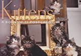 Kittens: A Book of 21 Postcards