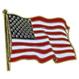 US Flag Store USA Lapel Pin Standard Flag