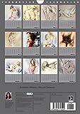 Image de Erotische Malerei - Akt und Dessous (Wandkalender 2016 DIN A4 hoch): 13 handgemalte P