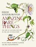 img - for Amazing Rare Things: The Art of Natural History in the Age of Discovery book / textbook / text book