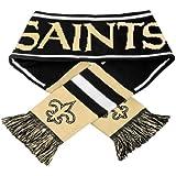 2013 NFL Football Team Logo Wordmark Scarf