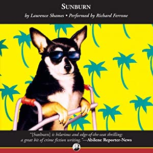 Sunburn Audiobook