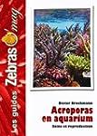 Acroporas en Aquarium