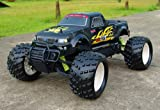 Radio Remote Control 1/5th Scale Petrol Car Model Truck 28cc