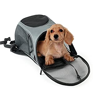 Pet Backpack Carrier bag for Cats and Dogs Portable Mesh Pup Outdoor Travel Soft-sided Free Your Hands Airline Approved Hold Pet up to 10 lb
