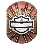 Harley-Davidsonå Sterling Silver Pink Enamel Round B&S Ride Bead. HDD0049