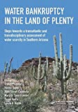 img - for Water Bankruptcy in the Land of Plenty (UNESCO-IHE Lecture Note Series) book / textbook / text book