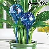 Aqua Loon - Globos para Regar las Plantas, Pack de 2