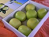 フルーツyamakiti ハウス品 高知産 水晶文旦 5~7玉 3キロ箱