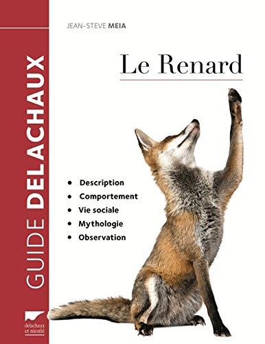 Le renard : Description, comportement, vie sociale, mythologie, observation