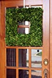 Flora Decor Preserved Boxwood Wreath Square 22""