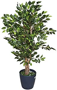 Fourwalls Artificial Ficus Tree with a Natural Trunk
