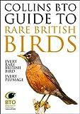 Collins BTO Guide to Rare British Birds