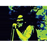 Art Emporio 'Bob Marley Green On Stage' Poster (Art Print, 40.64 Cm X 30.48 Cm)
