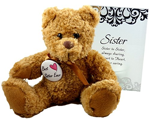 Best Sister Ever Gift - Perfect Gifts for In Law Sorority Sis from Sister or Brother for Birthday Christmas Thank You Christian - Teddy Bear Glass Plaque and Button (Always Your Little Girl Frame compare prices)