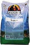 Wysong Synorgon Canine Dry Diet, 5-Pound