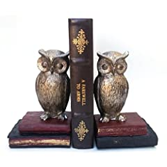 Wide Eyed Owl Bookends Pair