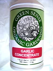 how to make garlic spray for the garden