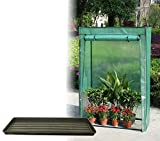 Outdoor Garden Cold Frame Growhouse Growbag Greenhouse Tray & Reinforced Cover