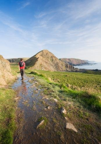 Caucasian Male Walker (30 Years Old) Approaching St Catherine'S Tor Near Hartland Quay On The South West Coast Path Devon England Uk Wall Decal - 30 Inches H X 21 Inches W - Peel And Stick Removable Graphic front-811435