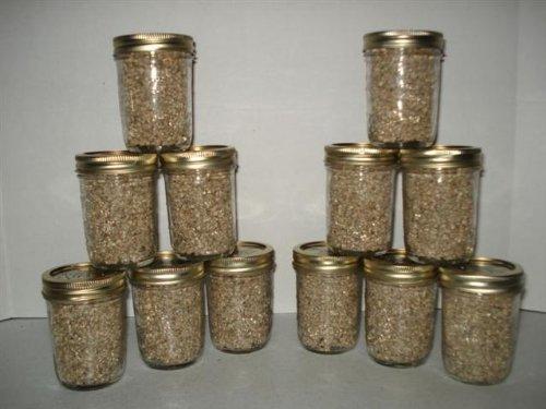 Brown Rice Flour&vermiculite Mushroom Substrate 24 Jars 1/2 Pint Growing Kit (Vermiculite Jars compare prices)