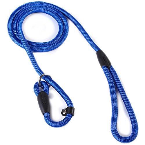 2013newestseller-Pet-Dog-Whisperer-Cesar-Slip-Training-Leash-Lead-Collar-Blue