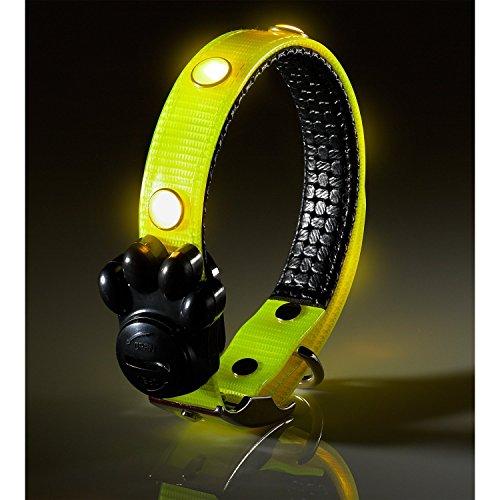 Bild von: Auraglow wasserdicht Sicherheits LED Hundehalsband Leine mit blinkenden Leuchtendes LEDs, klein, Gelb