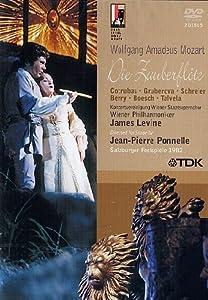 Mozart: The Magic Flute [DVD] [2006]