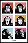 The Chimp - Poster - Pop + Wechselrah...
