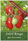 Tomaten Samen - 10 Stück - Soleil Rouge - Eiertomate