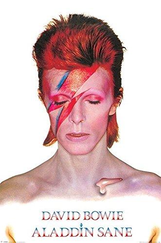デヴィッド・ボウイ ポスター /アラジン・セイン David Bowie (Aladdin Sane)