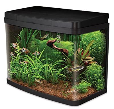Interpet Insight Glass Aquariums, Complete Premium Start Up Kit