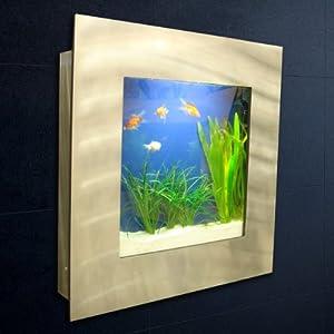 Achat vivant aquarium for Achat aquarium design
